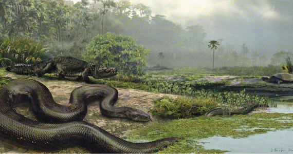 Титанобоа или огромная доисторическая змея